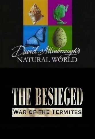 BBC: Наедине с природой: В осаде-война термитов - (The besieged War of the Termites)