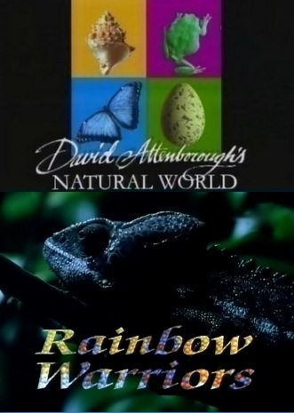 BBC: Наедине с природой: Рыцари в радужных доспехах - (BBC: Rainbow Warriors)