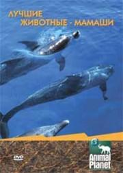 Лучшие животные-мамаши - (Animal Planet. Ultimate Animals)