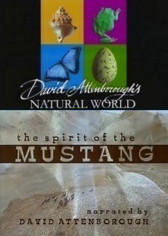 BBC: Наедине с природой: Дух Мустанга - (BBC: The spirit of the MUSTANG)