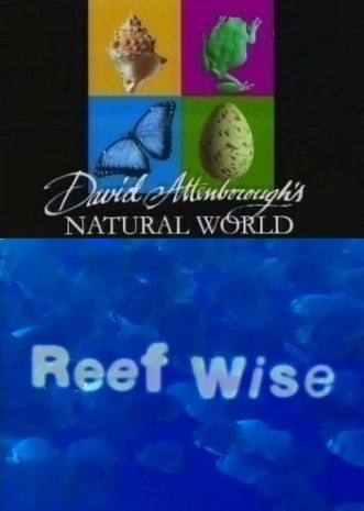 BBC: ������� � ��������: ����� ���� - (BBC: Reef Wise)