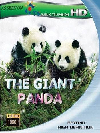 National Geographic: Гигантские панды - (Giant Panda)