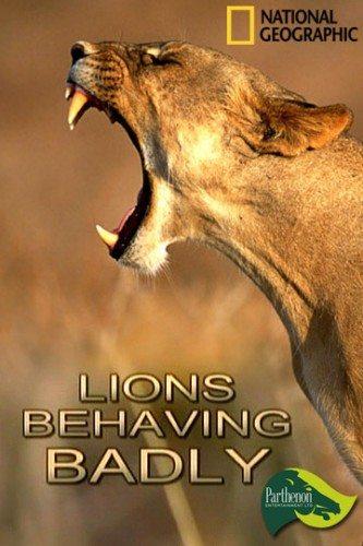 National Geographic: Львы-хулиганы - (Lions Behaving Badly)