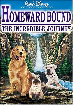 ������ �����: ����������� ����������� - Homeward Bound: The Incredible Journey
