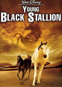 ��������� � ������ - The Young Black Stallion
