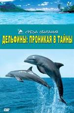 Дельфины: Проникая в тайны - (Dolphins: The Code Breake)