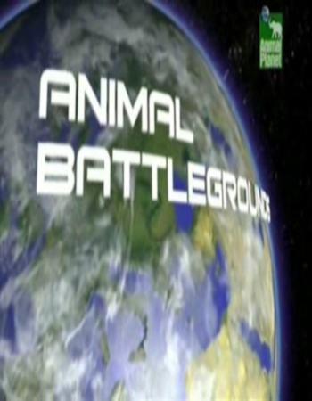 Animal Planet: Поля Звериных Сражений - (Animal Battlegrounds)