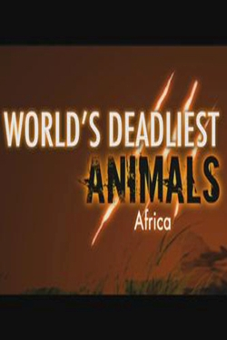 National Geographic: ����� ������� �������� ����: ������ - (World's Deadliest Animals: Africa)