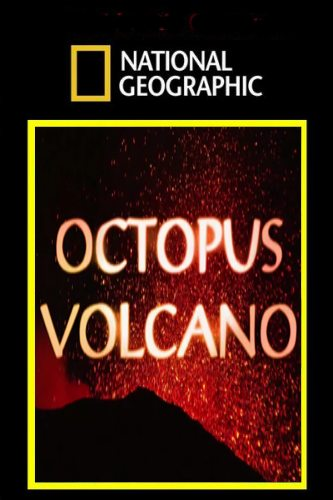 National Geographic: Вулкан осьминогов - (Octopus Volcano)