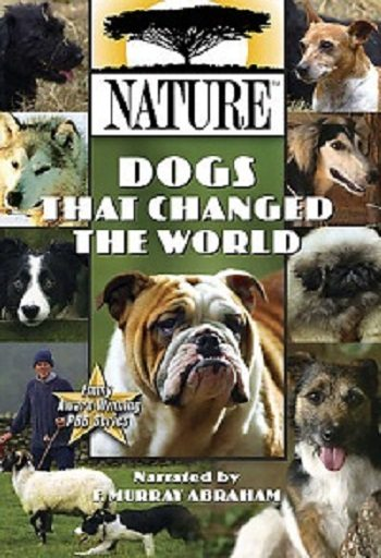 PBS Nаture. Собаки, которые изменили мир - (PBS NР°ture. Dogs That Changed The World)