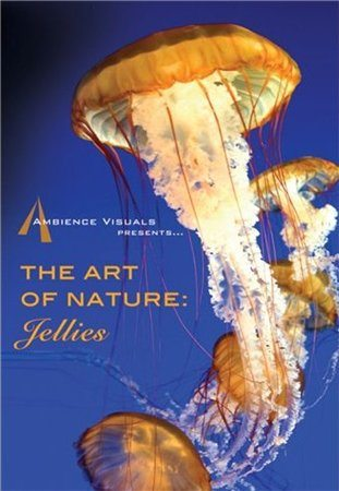 ��������� �������: ������ - (The Art of Nature: Jellies)