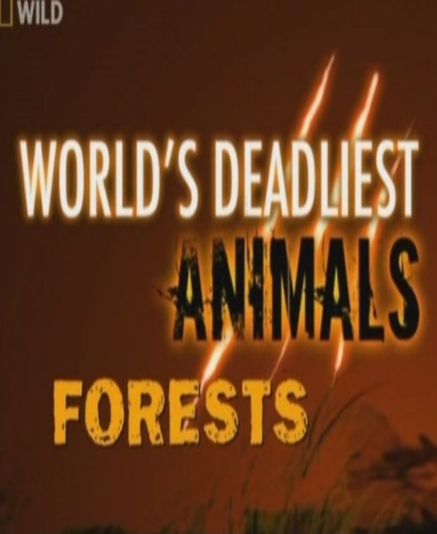 National Geographic: Самые опасные животные: Леса - (World's Deadliest Animals: Forests)