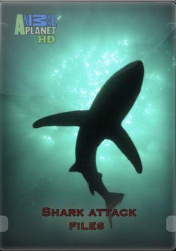 Досье акульих атак - (Shark attack files)