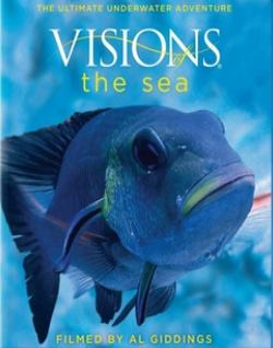 ������� ���� - (Visions of the Sea)