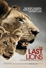 National Geographic: Последняя львица - (National Geographic: The Last Lioness)