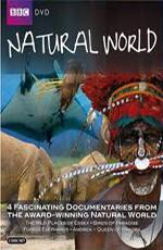 BBC: Королева морских дьяволов - (BBC: The Natural World. Queen of the Manta Rays)