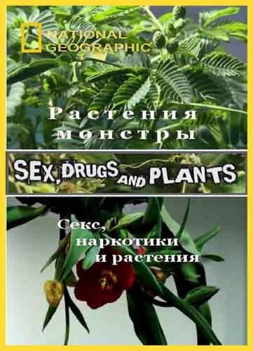 National Geographic : Растения - монстры (Секс, наркотики и растения) - (Sex, Drugs and Plants)