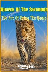 Animal planet: Королевы саванны. Искусство быть королевой - (Animal planet: Queens Of The Savannah. The Art Of Being The Queen)