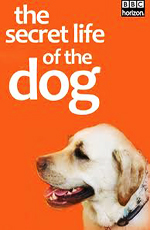 BBC: Тайная жизнь собак - (BBC: The Secret Life of The Dog)