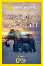 National Geographic: Мамонтёнок: застывший во времени - (National Geographic: Waking the Baby Mammoth)