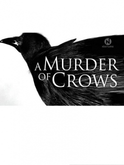 Воронья стая - A Murder of Crows
