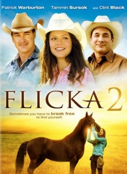 Флика 2 (2010) смотреть онлайн или скачать фильм через торрент.