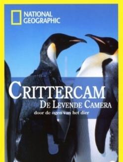 Мир глазами животных - Crittercam
