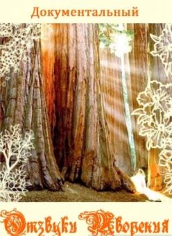 Отзвуки Творения - Echoes of Creation