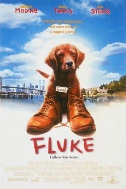 Флюк - Fluke