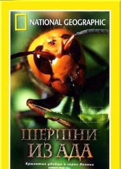 Шершни из ада - Hornets From Hell