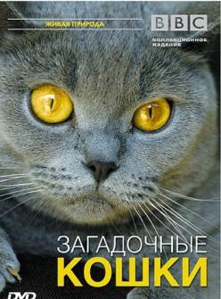 BBC: Загадочные кошки - The Cat Connection