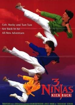 Три ниндзя наносят ответный удар - 3 Ninjas Kick Back