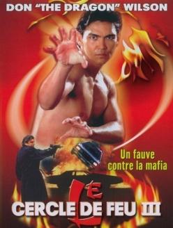 Огненное кольцо 3: Удар льва - Lion Strike
