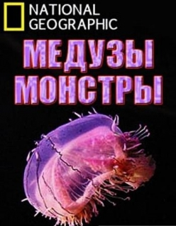 ������-������� - Monster Jellyfish