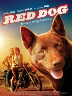 Рыжий пес - Red Dog