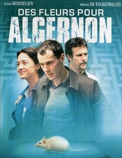 Цветы для Алджернона - Des fleurs pour Algernon