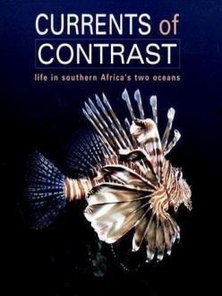 Контрастные океаны - Oceans of Contrast
