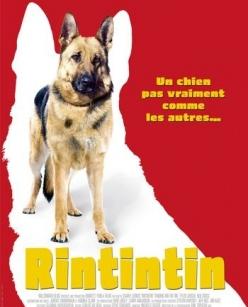 ����������� ��� - Finding Rin Tin Tin