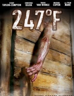 247 градусов по Фаренгейту - 247°F