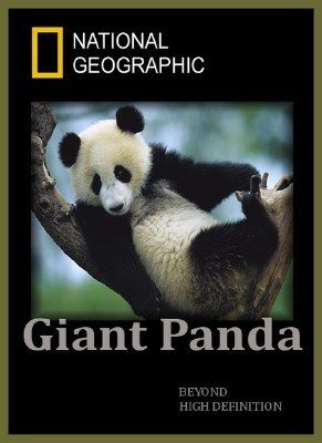 National Geographic: Гигантская панда (Панды на свободе) - (Giant Panda (Pandas in the Wild))