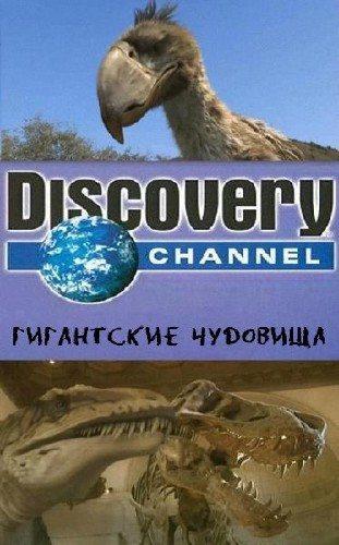 Discovery: Гигантские чудовища: Чудовищная птица (Ужасная птица) - (Mega Beasts: Terror Bird)