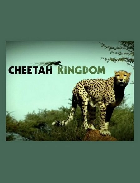 Царство гепардов - (Cheetah Kingdom)