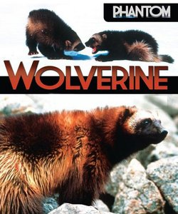 National Geographic: Неуловимая росомаха - (Phantom wolverine)