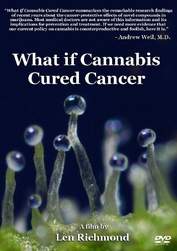 ��� ���� ��������� ������ �� ��� - (What if cannabis cured cancer)