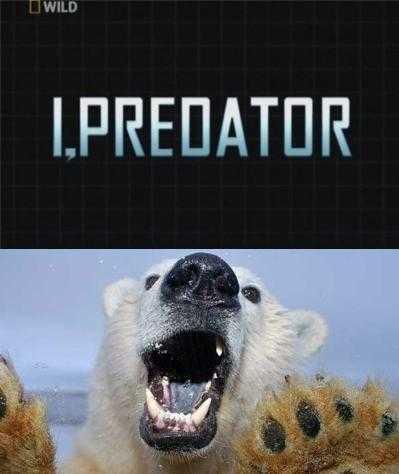 National Geographic : Суперхищники: Полярный медведь - (I,Predator : Polar Bear)
