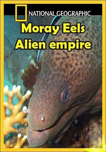 National Geographic: Мурены. Чужая империя - (National Geographic: Moray. Alien empire)