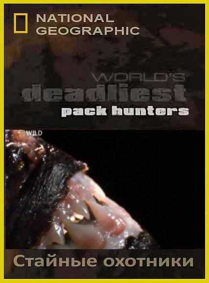 National Geographic : ����� ������� �������� : ������� �������� - (World's deadliest : Pack hanters)
