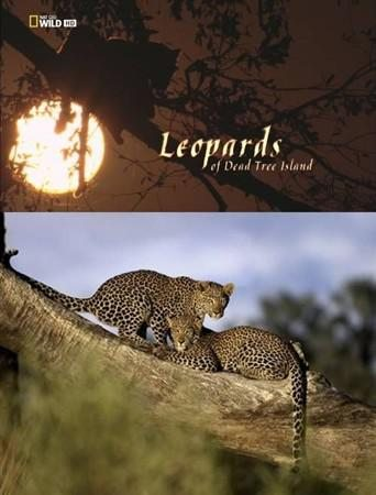 National Geographic: Леопарды дельты Окаванго - (National Geographic: Leopards of Dead Tree Island)