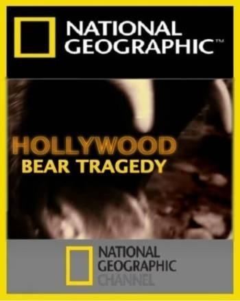 National Geographic: Голливудский медведь-убийца - (National Geographic: Hollywood bear tragedy)