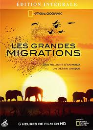 National Geographic: ������� �������� - (National Geographic: Great Migrations)
